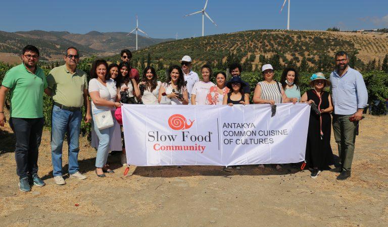 Slow Food Antakya Topluluğu'ndan Bağbozumu Şenlikleri